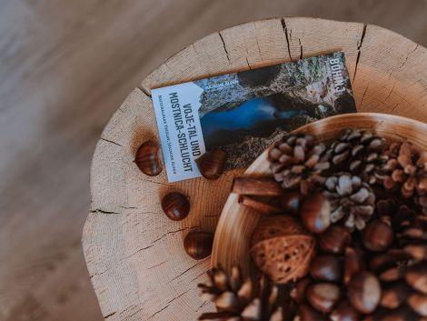 Raziščite, kaj vse vam ponuja Triglavski narodni park